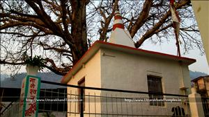 नागेश्वर मन्दिर, नागेश्वर गली श्रीनगर
